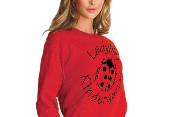 adult-sweatshirt