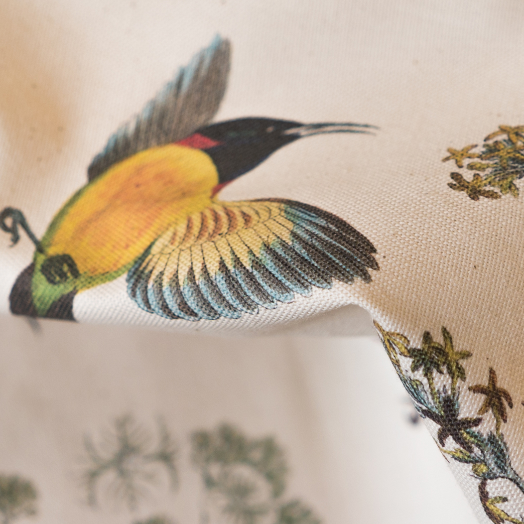 Natural Cotton Birds Fabric StuartMorris