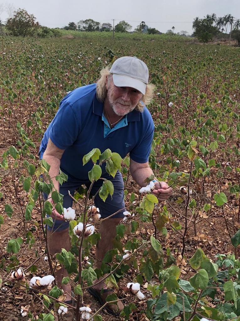 Stuart viewing the cotton plants